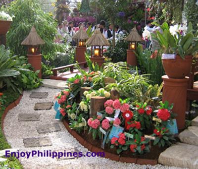 Flora filipina 2006 for Philippine garden plants