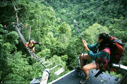 Canopy Walk in the Philippines